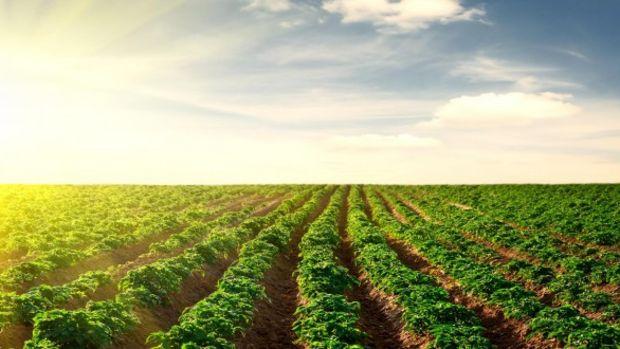 EXPO bahanesiyle 2500 dekar tarım toprağı imara açıldı!