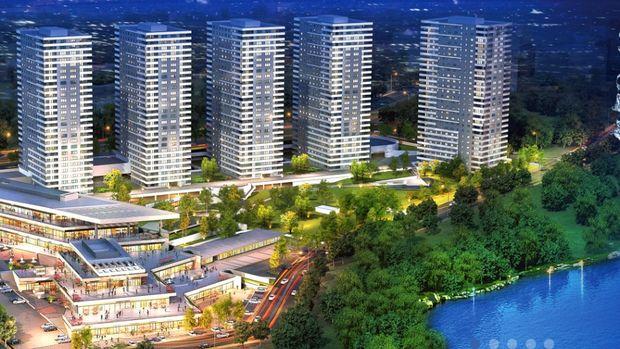 Kaşmir Mavi Orkide Fiyatları 550 bin TL'den Başlıyor