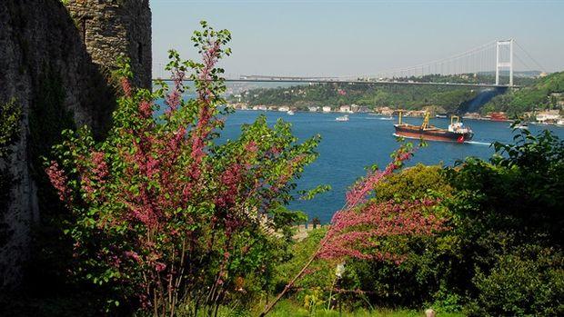 İstanbul'a 4 Milyon Metrekare Yeni Yeşil Alan!