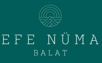 Efe Nüma Balat Bursa
